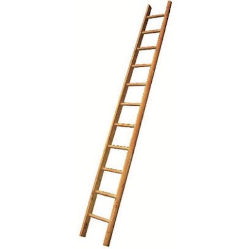 Pole Ladder